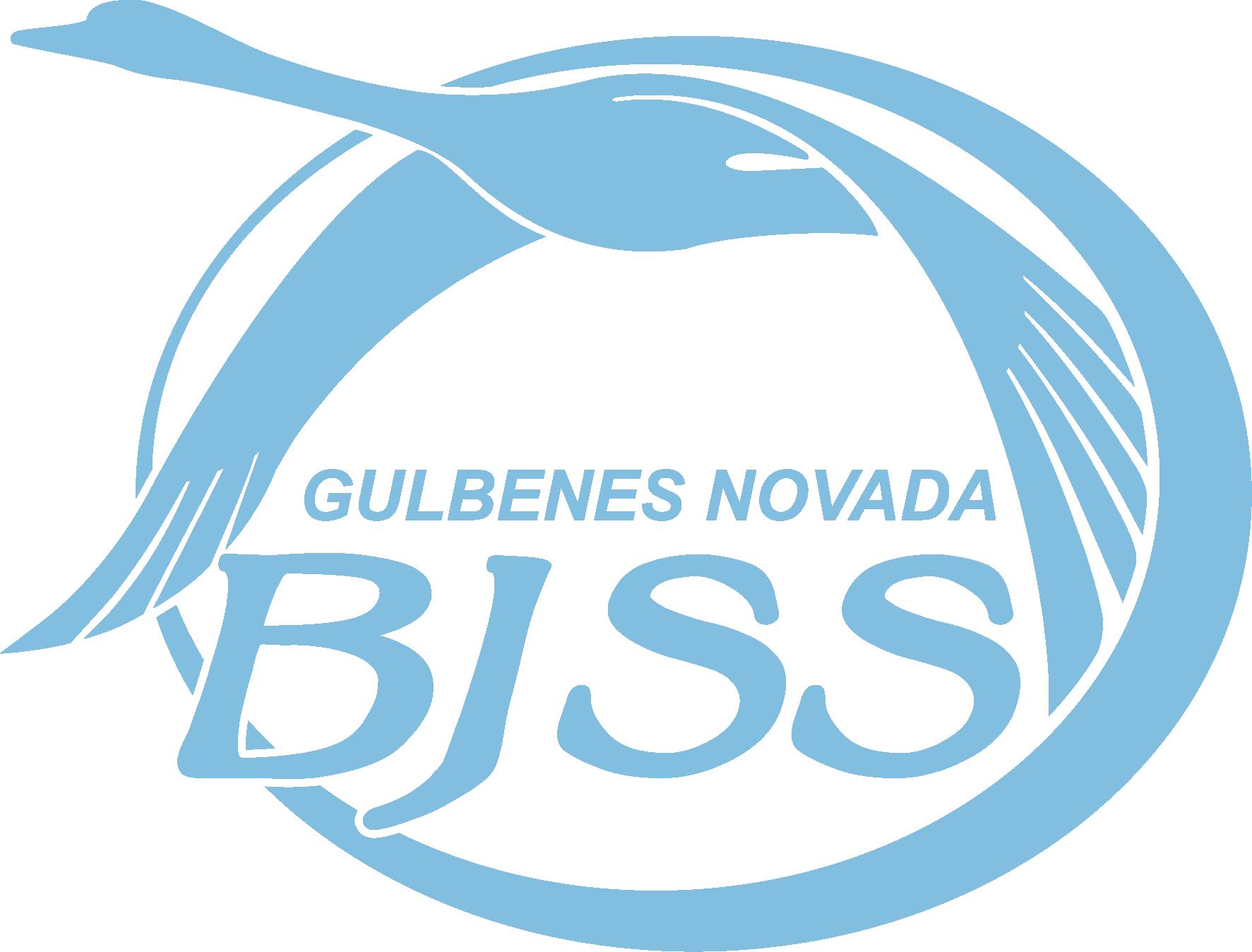 Gulbenes BJSS u8 II